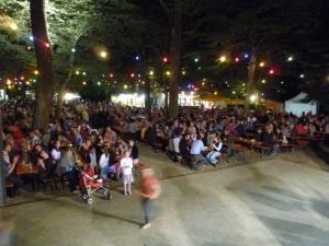 Waldfest in Gaissmarkt_15