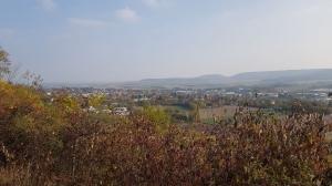 Musikerausflug nach Heilbronn_4