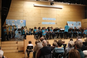 Juka Konzert 2015_30